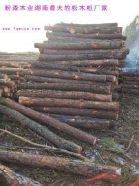 海南鬆木樁 4米鬆木樁多少錢 盼森木業