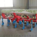 阜阳手扶带玉米播种机 优质玉米播种机图片