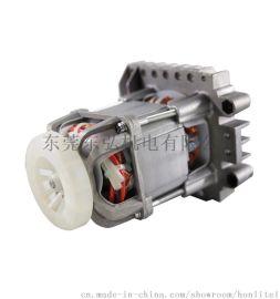 Honlite 微型电机齿轮箱感应电机定制厂家