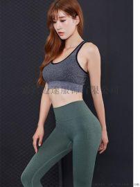弹力紧身健身裤女 训练瑜伽裤运动跑步透气长裤