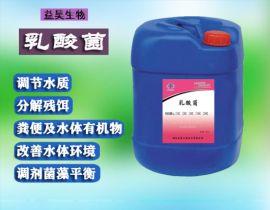 水产乳酸菌厂家 鱼虾养殖用水产乳酸菌