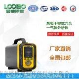 LB-MT6X泵吸手提式六合.一气体分析仪