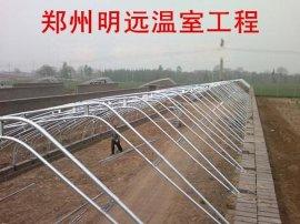 安阳简易钢架温室大棚建造 南阳蔬菜大棚建设典范