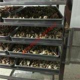 全天候运行蘑菇烘干系统,省钱蘑菇烘干房