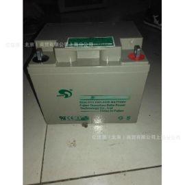 赛特BT-HSE-38-12 12V38AH 铅酸蓄电池
