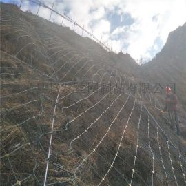 护坡防护网.山体防护网.山坡防护网.边坡防护网