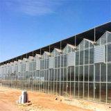 北京市玻璃温室大棚工程 玻璃温室承建