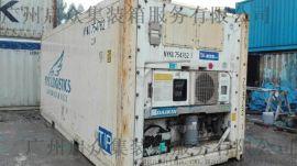开利69NT40系列20英尺冷藏集装箱