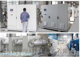 绿邦C系列氧气源大型臭氧发生器