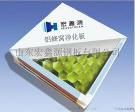 医用洁净板 医用洁净板厂家 医用洁净板规格 医用洁净板芯材型号