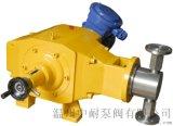 DZ-D型柱塞式計量泵