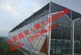 玻璃溫室大棚建造,青州千匯系列玻璃溫室質量可靠