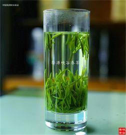 婺源峡谷春银须绿茶