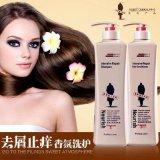 中國日化用品開店批發 阿道夫洗髮水供應商報價 一手貨源