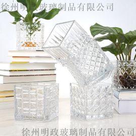 透明玻璃瓶水培植物容器綠蘿養花小花瓶幹花插花客廳擺件裝飾花盆