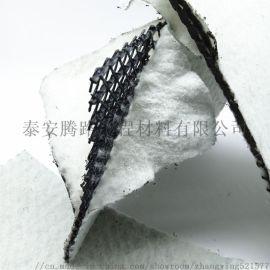 三維複合排水網規格/三維複合排水網報價