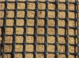 珠海香洲 凸点土工格栅 塑料土工格栅 专业生产厂