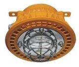 30W吊杆式防爆led泛光燈 化工廠適用