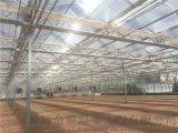 安徽阳光板温室建设的条件