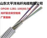 OPGW光纜 OPGW-12B1-100[60;74] 12芯單模光纖 100截面 電力光纜