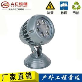 AE照明AE-TGD-03LED投射灯庭院灯聚光灯景观灯小射灯户外室外防水投光灯工程灯鸭蛋灯 3*18W带挡板
