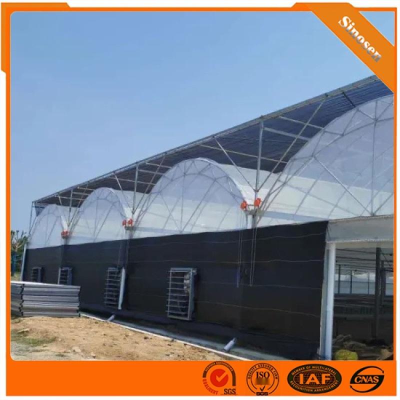 蔬菜陽光陽光溫室雙拱雙膜連棟溫室供應薄膜陽光溫室