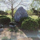 定制精品自然风景石 山水风景石 园林庭院景观石 雪浪石切片摆件