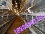 安阳蛋鸡笼丨层叠式鸡笼丨育雏笼丨自动化养鸡设备【河南银星】
