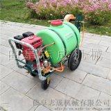 志成汽油高压柱塞泵喷雾器手推式洒水机