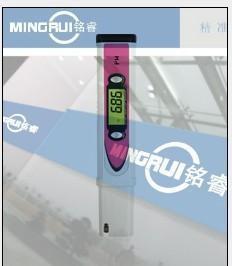 铭睿笔式酸度检测仪 PH-981酸碱度计