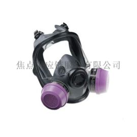 霍尼韦尔Honeywell TPE材质 双滤盒弹性橡胶全防护面罩 54001