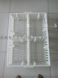 分隔断式  运输箱 塑料鸭苗鹅苗箱 鸭苗转运筐