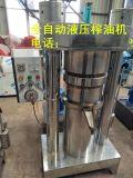 芝麻液壓緩衝榨油機,宏發設備,20公斤型榨霸