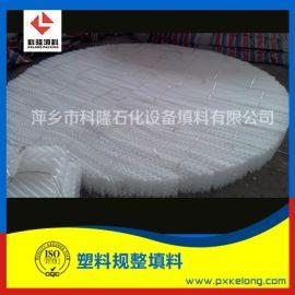 脱硫塔SB-250Y塑料波纹填料PP波纹板规整填料