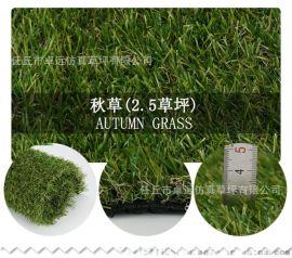 温州仿真草皮厂家,幼儿园草坪,足球场草坪