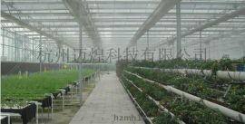 MH-WSK物联网智能温室控制系统