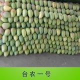 新鲜水果广西水果批发台农一号大台农芒产地直供批发代发芒果
