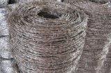 围墙防盗用刺丝网、热镀锌刺网、围栏用镀锌刺丝凯安直销