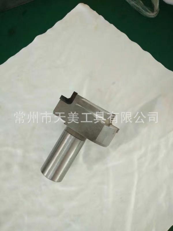 工廠直銷 訂製鎢鋼成型刀 硬質合金成型銑刀 焊接刀具 非標刀具