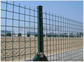 安平冠航厂家直供荷兰网 波浪护栏网  涂塑荷兰网