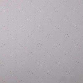 衆安600*600*4-6mm硅酸鈣板天花板