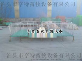 畜牧设备小猪保育床双体塑料漏粪板制作厂家