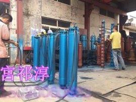 大流量漂浮式轴流泵 QZB浮筒式潜水轴流泵生产厂家