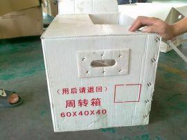 生产钙塑箱,广州市诺众钙塑包装有限公司