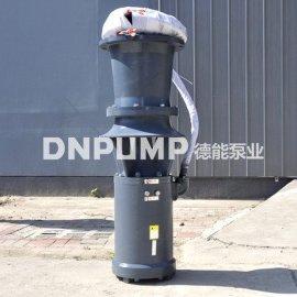 天津德能350QSZ简易轴流泵