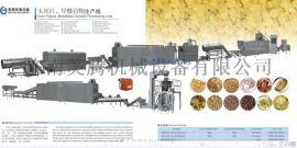 6570设备营养速食玉米片生产线羙驣设备中国造