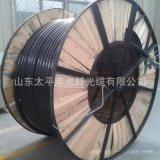 太平洋品牌gyta 光缆12芯 单模光纤 室外光缆 厂家直销