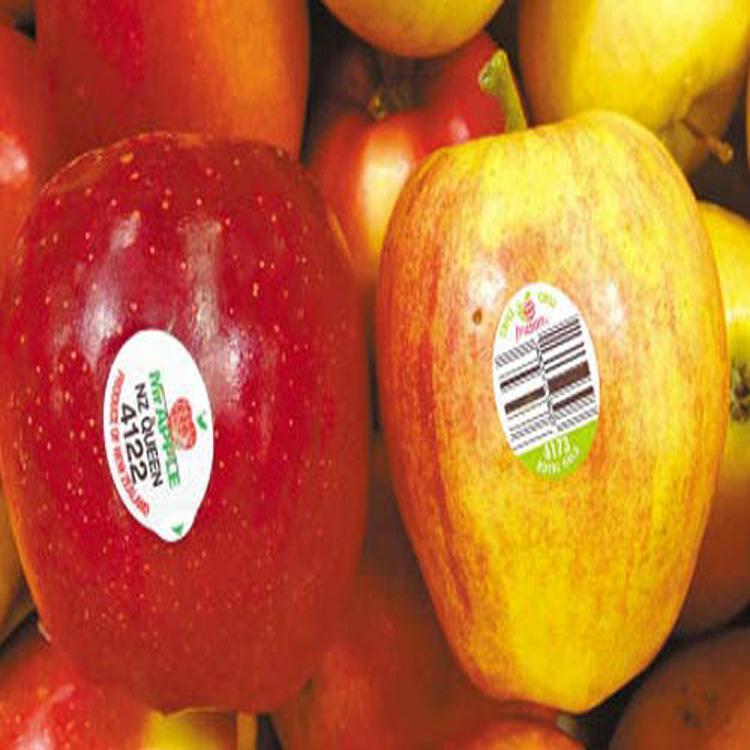 農家土雞蛋標籤貼紙/紅富士蘋果不乾膠商標