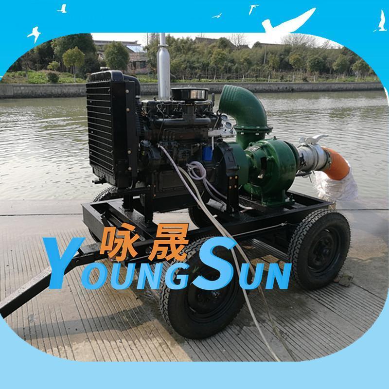 12寸農田灌溉柴油機水泵機組 10寸柴油抽水機
