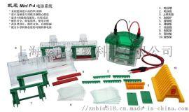 凯元MP-8020 Mini P-4 预制胶电泳槽